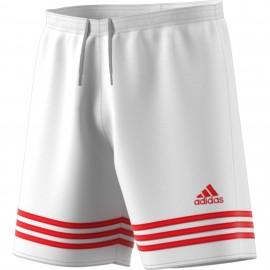 Adidas Short Entrada 14 Team  Bianco/Rosso