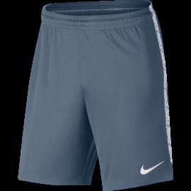 Nike Short Dry Squad  Grigio/Bianco